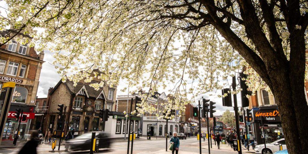 Colin Bibra - Should We Ban Estate Agency Boards in Ealing